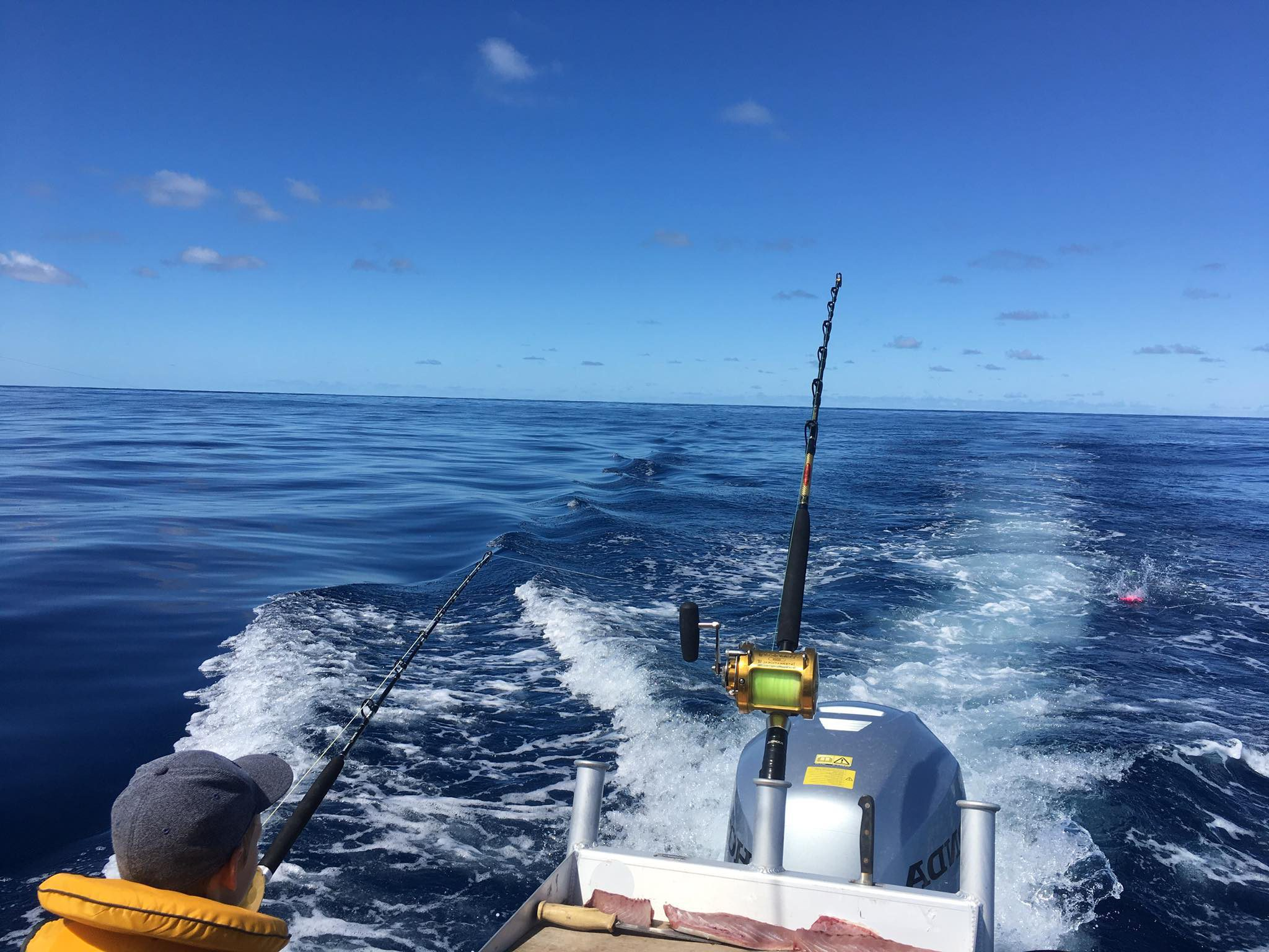 Trawling in the boat wake on a stunning day